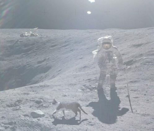 La prueba definitiva de que el hombre no piso la luna